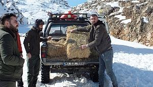 Yaban Hayvanları İçin Doğaya 5 Ton Yem Bıraktılar