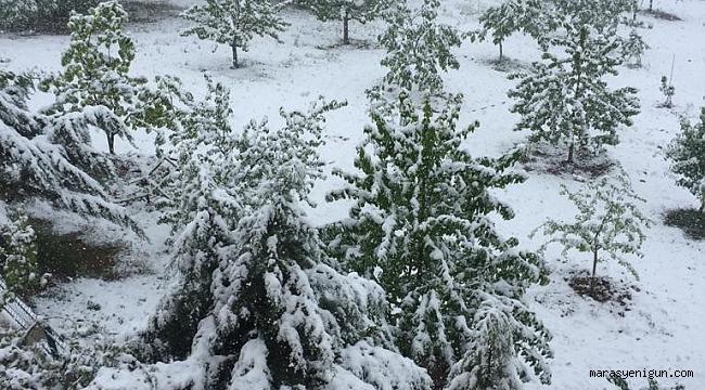Kahramanmaraş'ta Mayıs Ayında Lapa Lapa Kar Yağdı