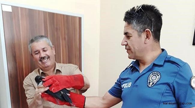 Polis, Yaralı Şahini Görevlilere Teslim Etti.