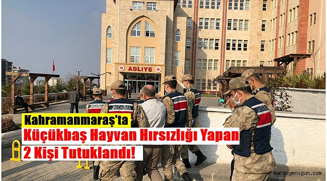 Kahramanmaraş'ta Küçükbaş Hayvan Hırsızlığı Yapan 2 Kişi Tutuklandı!