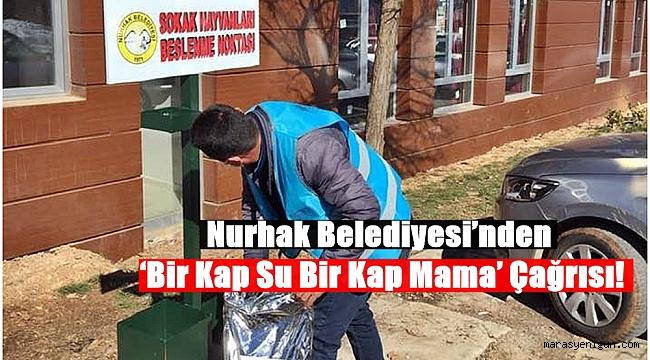 Nurhak Belediyesi'nden 'Bir Kap Su Bir Kap Mama' Çağrısı!